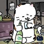 11_01_25_cat_news