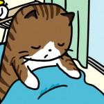 11_02_03_cat_sleepy