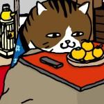 11_02_06_cat_kotatu