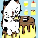 11_02_18_cat_pdding
