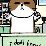 11_02_23_cat_idontknow