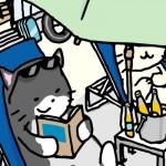 11_04_02_cat_beach
